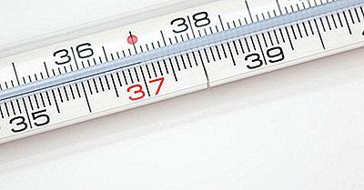 ¿Cuál Es La Temperatura Corporal Normal Para Los Humanos?