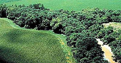 Hvad Er En Riparian Zone?