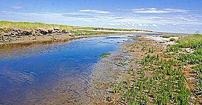 ¿Qué Es Un Tidal Creek En Geografía?