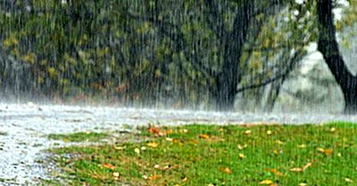 Ce Este Ploaia Torențială?