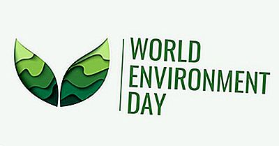 ¿Cuándo Y Por Qué Se Celebra El Día Mundial Del Medio Ambiente?