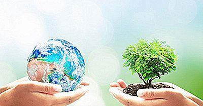 När Är Jordens Dag Och Varför Firas Den?