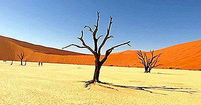 Où Se Trouve Le Désert Du Kalahari?
