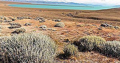 Où Se Trouve Le Désert De La Patagonie?