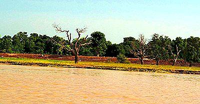 Unde Este Râul Niger?