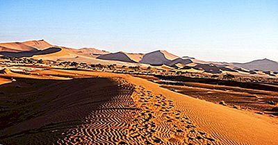 ¿Qué Animales Viven En El Desierto De Namib?