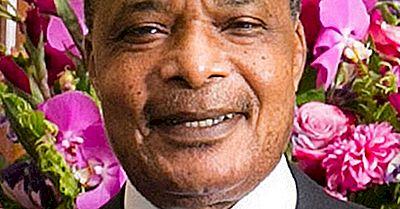 Presidentes De La República Del Congo (Congo-Brazzaville)