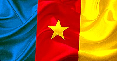 Che Tipo Di Governo Ha Il Camerun?