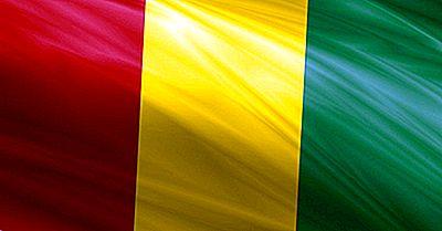 Que Tipo De Governo Tem A Guiné?