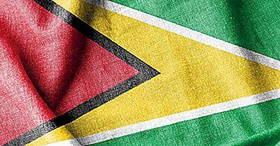 Che Tipo Di Governo Ha La Guyana?