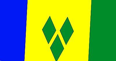 Welk Type Regering Heeft Saint Vincent En De Grenadines?