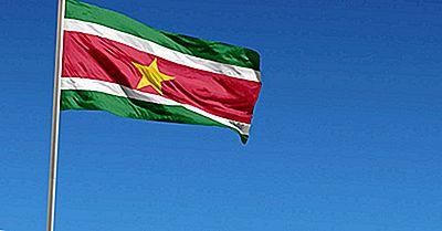 Welche Art Von Regierung Hat Suriname?