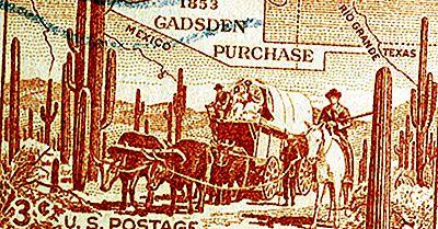 Was War Der Kauf Von Gadsden?