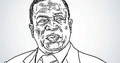 ¿Quién Es El Presidente De Zimbabwe?