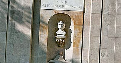 Alexander Fleming - Figure Importanti In Tutta La Storia
