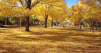 Australische Nationale Universität - Institutionen Auf Der Ganzen Welt