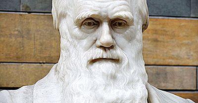 Charles Darwin - Wichtige Persönlichkeiten In Der Geschichte