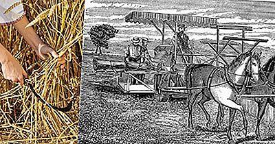 La Révolution Agricole Britannique A-T-Elle Conduit À La Révolution Industrielle?