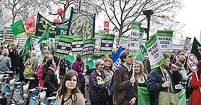 Green Party Movement