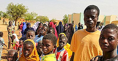 Maiores Grupos Étnicos No Níger