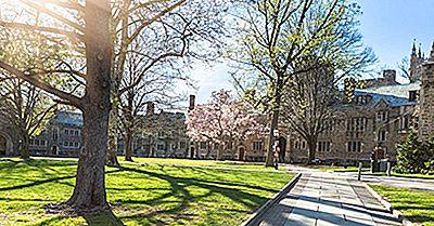 Universitatea Princeton - Instituții Educaționale Din Întreaga Lume