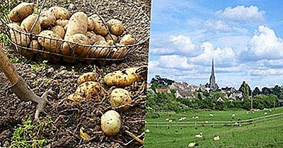 A Revolução Agrícola Escocesa E As Folgas Das Terras Altas E Terras Altas