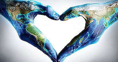 O Que E Quando É O Dia Internacional Da Solidariedade Humana?