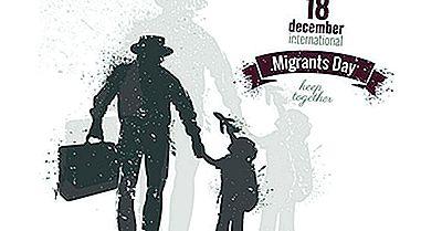 Cosa E Quando È La Giornata Internazionale Dei Migranti?