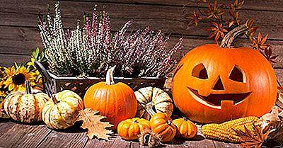 Vad Är Halloween Kort?