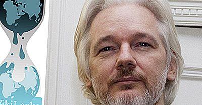 Was Ist Wikileaks? Ist Es Eine Kriminelle Operation?