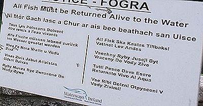 ¿Qué Idiomas Se Hablan En Irlanda?