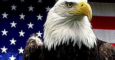 Qu'Est-Ce Qui A Fait Du Pygargue L'Oiseau National Des États-Unis?
