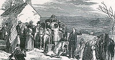 Quelle Était La Famine Irlandaise De La Pomme De Terre?