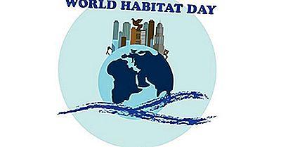 Quando E Por Que O Dia Mundial Do Habitat É Celebrado?