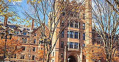 Yale University - Instituciones Educativas Alrededor Del Mundo