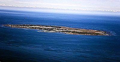 7 Raisons De Visiter Robben Island, Afrique Du Sud