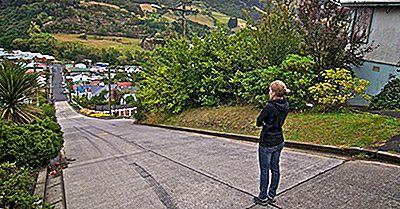Baldwin Street, Nueva Zelanda - La Calle Residencial Más Empinada Del Mundo