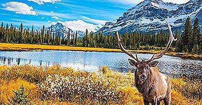 Melhores Lugares Para Visitar No Canadá
