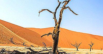 Deadvlei - Unikke Steder I Namibia