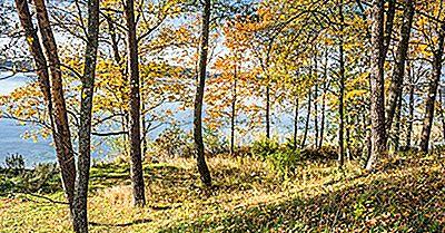 I Cinque Parchi Nazionali Della Lituania