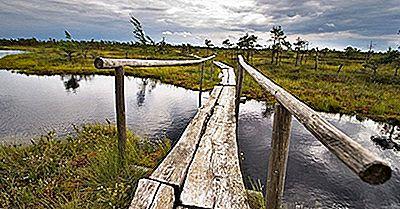 Os Quatro Parques Nacionais Da Letónia