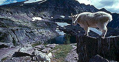 Parcs Nationaux Du Montana, Aire De Loisirs Nationale Et Sentier Géologique National