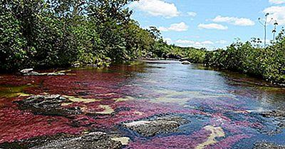 El Río De Los Cinco Colores: Lugares Únicos En El Mundo