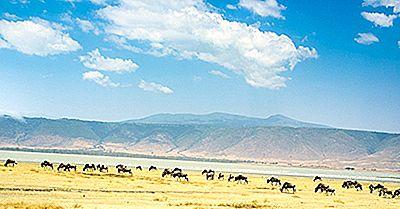 Las Siete Maravillas Naturales De África: Destinos De Viaje Únicos Y Cautivadores