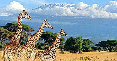 Les Parcs Nationaux Spectaculaires Du Kenya