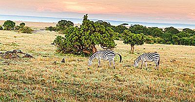 Top 10 Des Destinations Touristiques Au Kenya