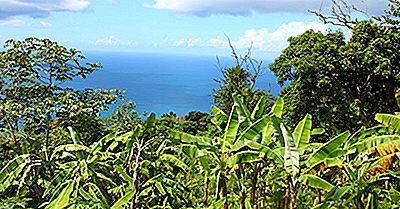 Atrações Turísticas Nas Ilhas Virgens Britânicas