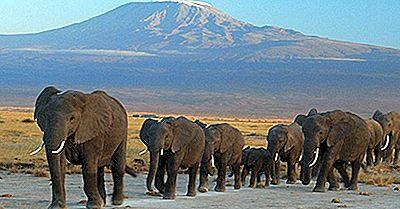 Unesco-Werelderfgoedlocaties In Tanzania