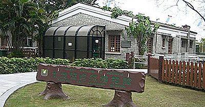 Visitando Los Mejores Museos De Macao