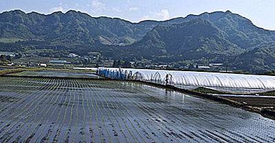 ¿Qué Sabes Sobre La Isla De Kyushu?